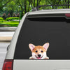 Can You See Me Now - Welsh Corgi Car/ Door/ Fridge/ Laptop Sticker V1