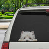 Can You See Me Now - West Highland White Terrier Car/ Door/ Fridge/ Laptop Sticker V1