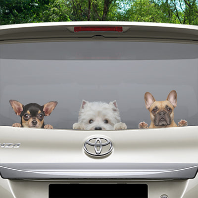 Can You See Me Now - West Highland White Terrier auto / deur / koelkast / laptop sticker V1