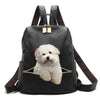 Coton De Tulear Backpack V1