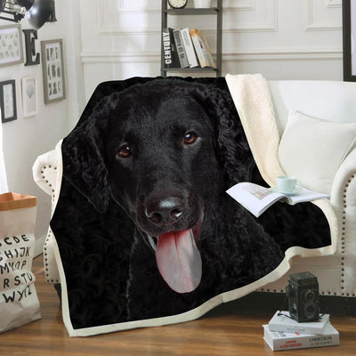 Curly Coated Retriever Blanket V1