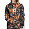 You Will Have A Bunch Of Dachshunds- Hoodie V1
