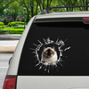 Get In - It's Time For Shopping - Birman Cat Car/ Door/ Fridge/ Laptop Sticker V1