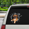 Get In - It's Time For Shopping - Boxer Car/ Door/ Fridge/ Laptop Sticker V2