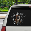 Get In - It's Time For Shopping - Boxer Car/ Door/ Fridge/ Laptop Sticker V3