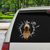 Get In - It's Time For Shopping - Briard Car/ Door/ Fridge/ Laptop Sticker V1