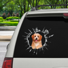 Vstupte - Je čas na nákupy - Havanese Car / Door / Fridge / Laptop Sticker V2