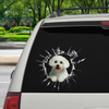 Get In - It's Time For Shopping - Maltese Car Sticker V1