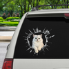 Get In - It's Time For Shopping - Persian Chinchilla Cat Car Sticker V1