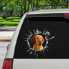 Get In - It's Time For Shopping - Wire Haired Vizsla Car/ Door/ Fridge/ Laptop Sticker V1
