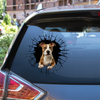 Get In - It's Time For Shopping - American Staffordshire Terrier Car/ Door/ Fridge/ Laptop Sticker V3