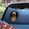 Get In - It's Time For Shopping - Briard Car/ Door/ Fridge/ LaptopSticker V1