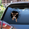 Get In - It's Time For Shopping - Chihuahua Car Sticker V4