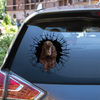 Get In - It's Time For Shopping - English Cocker Spaniel Car/ Door/ Fridge/ Laptop Sticker V1