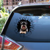 Get In - It's Time For Shopping - Schnauzer Car/ Door/ Fridge/ Laptop Sticker V1