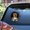 Get In - It's Time For Shopping - Staffordshire Bull Terrier Car/ Door/ Fridge/ Laptop Sticker V3
