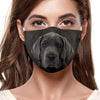 Great Dane F-Mask V2