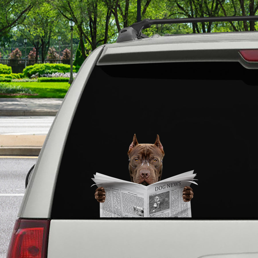Have You Read The News Today - American Pit Bull Terrier Car/ Door/ Fridge/ Laptop Sticker V1