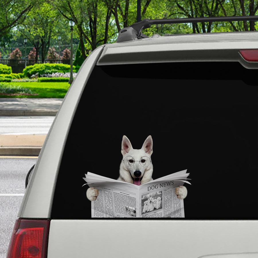 Have You Read The News Today - Berger Blanc Suisse Car/ Door/ Fridge/ Laptop Sticker V1