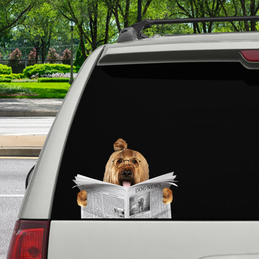 Have You Read The News Today - Briard Car/ Door/ Fridge/ Laptop Sticker V1