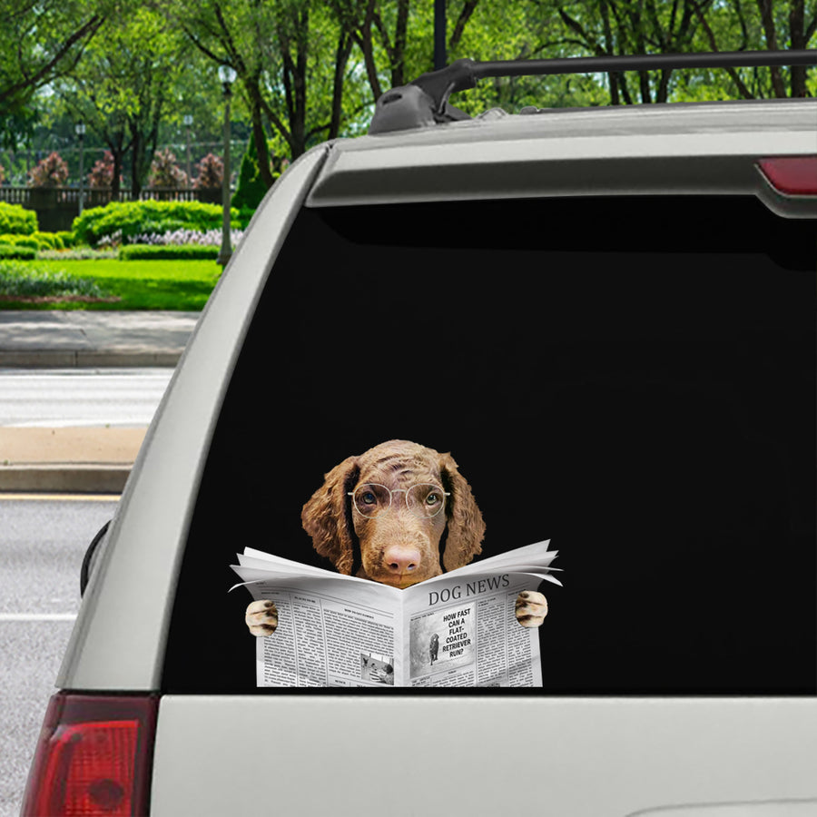 Have You Read The News Today - Curly Coated Retriever Car/ Door/ Fridge/ Laptop Sticker V1