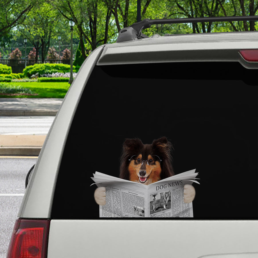 Have You Read The News Today - Rough Collie Car/ Door/ Fridge/ Laptop Sticker V1