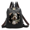 It's All Mine - Old English Sheepdog Backpack V1