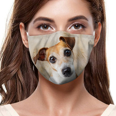 Jack Russell Terrier F-Mask V1