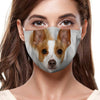 Rat Terrier F-Mask V1