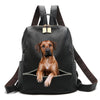 Rhodesian Ridgeback Backpack V2