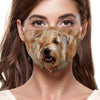 Soft Coated Wheaten Terrier F-Mask V1