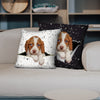 They Steal Your Couch - Brittany Spaniel Pillow Cases V1 (Set of 2)