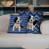 They Steal Your Couch - English Setter Pillow Cases V1 (Set of 2)