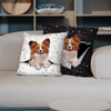 They Steal Your Couch - Papillon Pillow Cases V1 (Set of 2)