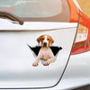 We Like Riding In Cars - English Pointer Car/ Door/ Fridge/ Laptop Sticker V1