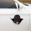 We Like Riding In Cars - Lhasa Apso Car/ Door/ Fridge/ Laptop Sticker V2