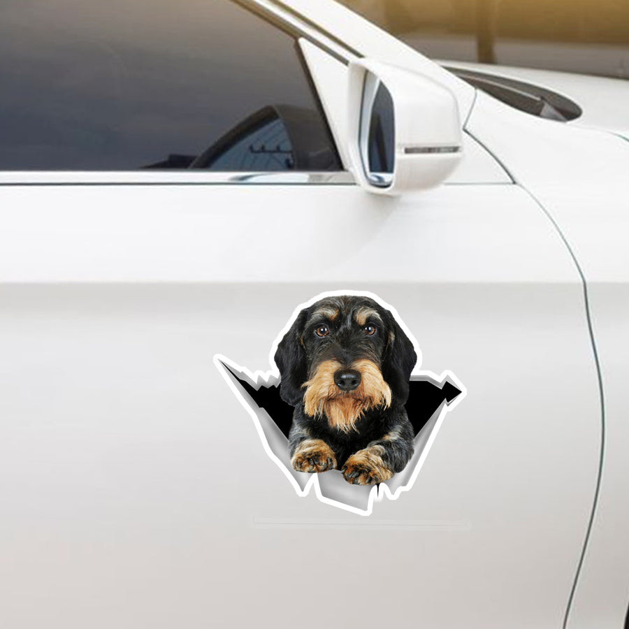 Vi kan godt lide at køre i biler - Wire Haired Dachshund Car / Door / Køleskab / Laptop Sticker V1