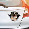 We Like Riding In Cars -  Australian Shepherd Car/ Door/ Fridge/ Laptop Sticker V1