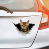 We Like Riding In Cars -  Bengal Cat Car/ Door/ Fridge/ Laptop Sticker V1