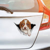 We Like Riding In Cars - Brittany Spaniel Car/ Door/ Fridge/ Laptop Sticker V2