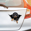 We Like Riding In Cars - Dachshund Car/ Door/ Fridge/ Laptop Sticker V1