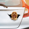 We Like Riding In Cars - English Cocker Spaniel Car Sticker V2
