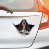 We Like Riding In Cars - English Cocker Spaniel Car Sticker V3