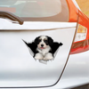 We Like Riding In Cars - Havanese Car/ Door/ Fridge/ Laptop Sticker V1