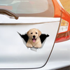We Like Riding In Cars - Labrador Car/ Door/ Fridge/ Laptop Sticker V2