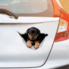 We Like Riding In Cars - Rottweiler Car/ Door/ Fridge/ Laptop Sticker V2