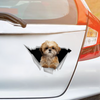 We Like Riding In Cars - Shih Tzu Car/ Door/ Fridge/ Laptop Sticker V1