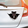We Like Riding In Cars - Staffordshire Bull Terrier Car/ Door/ Fridge/ Laptop Sticker V1