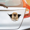 We Like Riding In Cars - Tibetan Spaniel Car/ Door/ Fridge/ Laptop Sticker V1