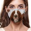 Welsh Springer Spaniel F-Mask V1